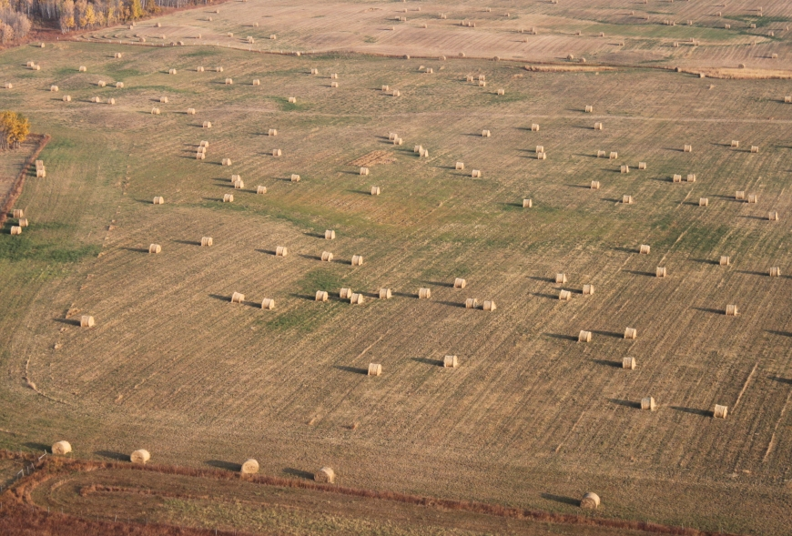 Picture from above a field